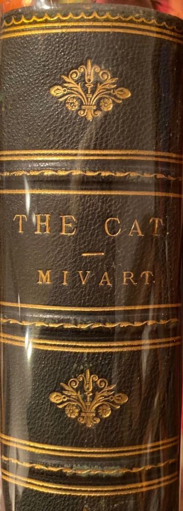The Cat An Introduction To The Study of Backboned Animals Especially Mammals. St. George MIVART.
