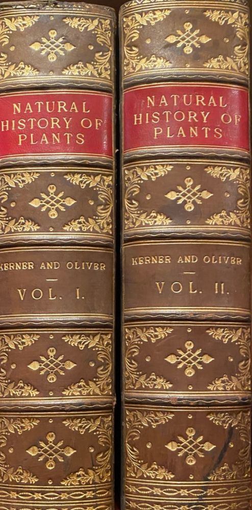 The Natural History of Plants. Their Forms, Growth, Reproduction, and Distribution. F W. Oliver.