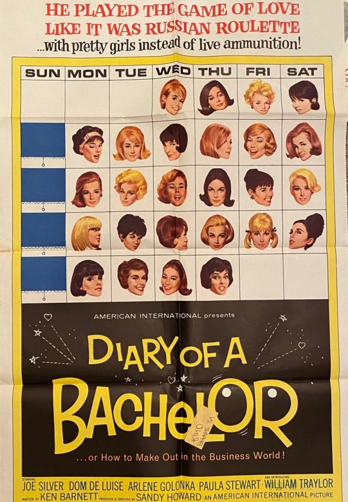 Diary of a Bachelor or How to Make Out in the Business World. Movie poster.