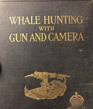 Whale Hunting with Gun And Camera. A Naturalist's Account of The Modern Shore-Whaling Industry,...