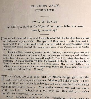 Pelorus Jack. Journal of the Polynesian Society. T. W. DOWNES